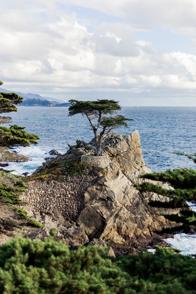 17 Mile Drive, Pebble Beach, CA, Monterey, CA