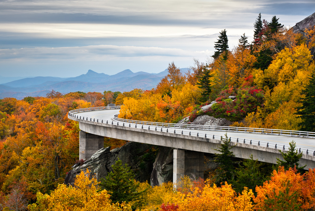 gallery-viaduct-in-yellow-fall.jpg