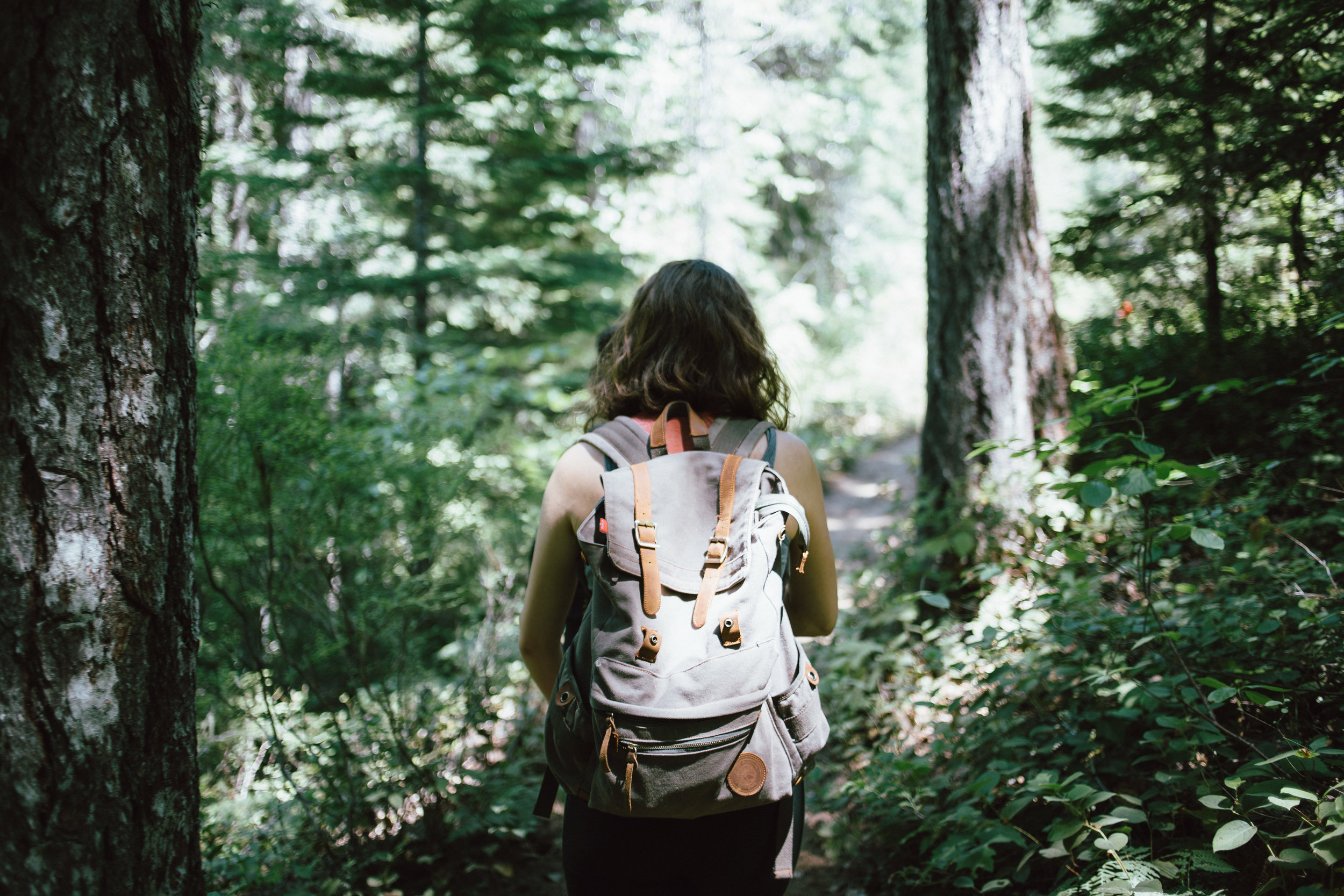 Hikes on magnificent trails