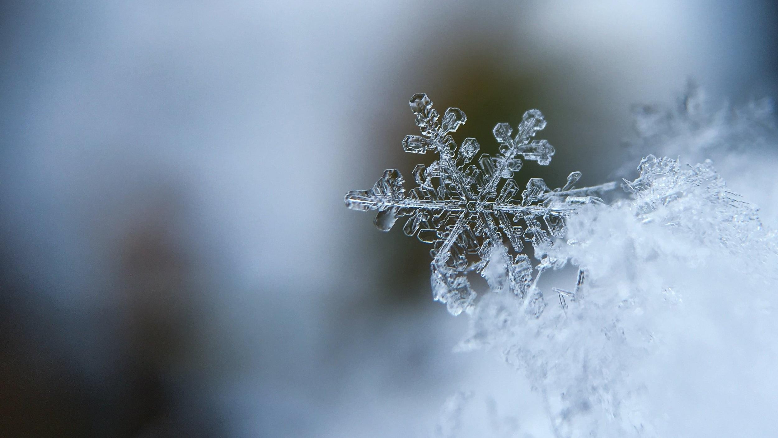 Winter Work -