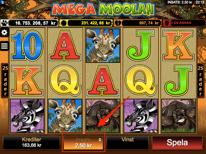 Mega Moolah välj instatsnivå.png