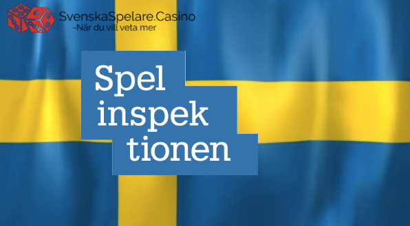 Den Svenska Spellicensen.png