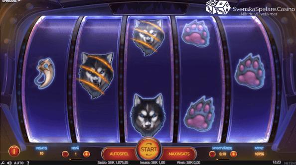 Alla symbolerna Spinsane NetEnt Casino slot recension.png