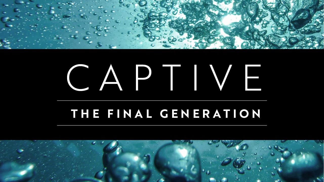 CJ_Captive.jpg