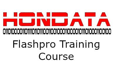 Flashpro training  copy.jpg