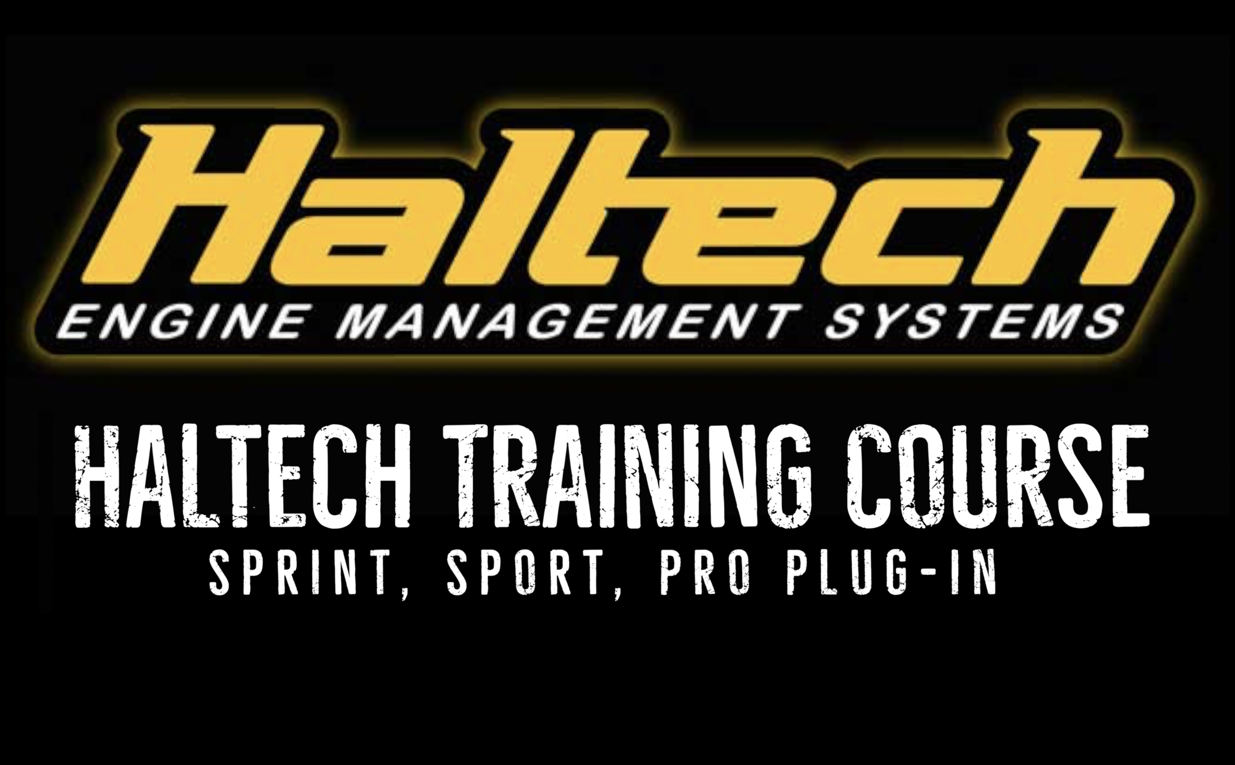 Haltech Sport .png