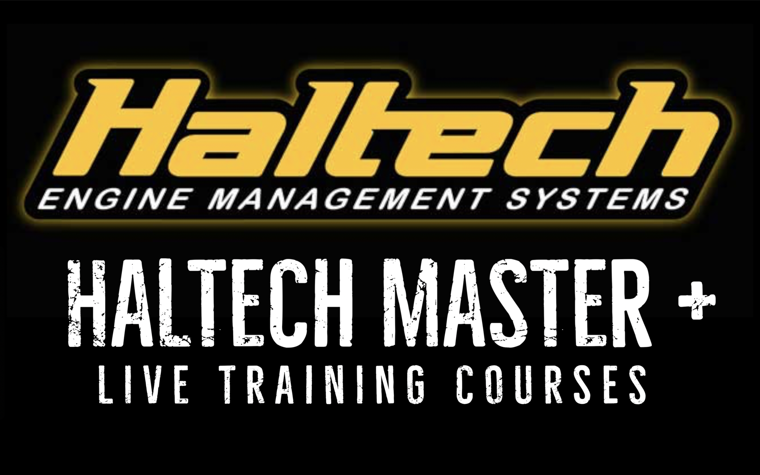 Haltech Master All + Live .png