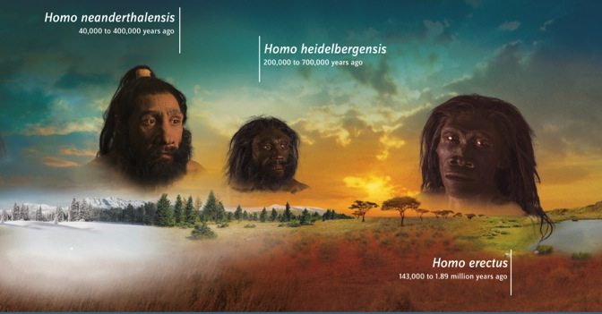 The  Exploring Human Origins: What Does It Mean to Be Human? t raveling exhibit was designed to inspire people to contemplate their place in the natural world and reflect on how human ancestors such as  Homo neanderthalensis ,  Homo heidelbergensis  and  Homo erectus  evolved to adapt in a variety of climates over millions of years. Developed by the Smithsonian Institution and the American Library Association, the traveling exhibit appeared at 19 public libraries across the country between April 2015 and April 2017.  Payne Theological Seminary is the first seminary, and the first private institution, to host the exhibit.