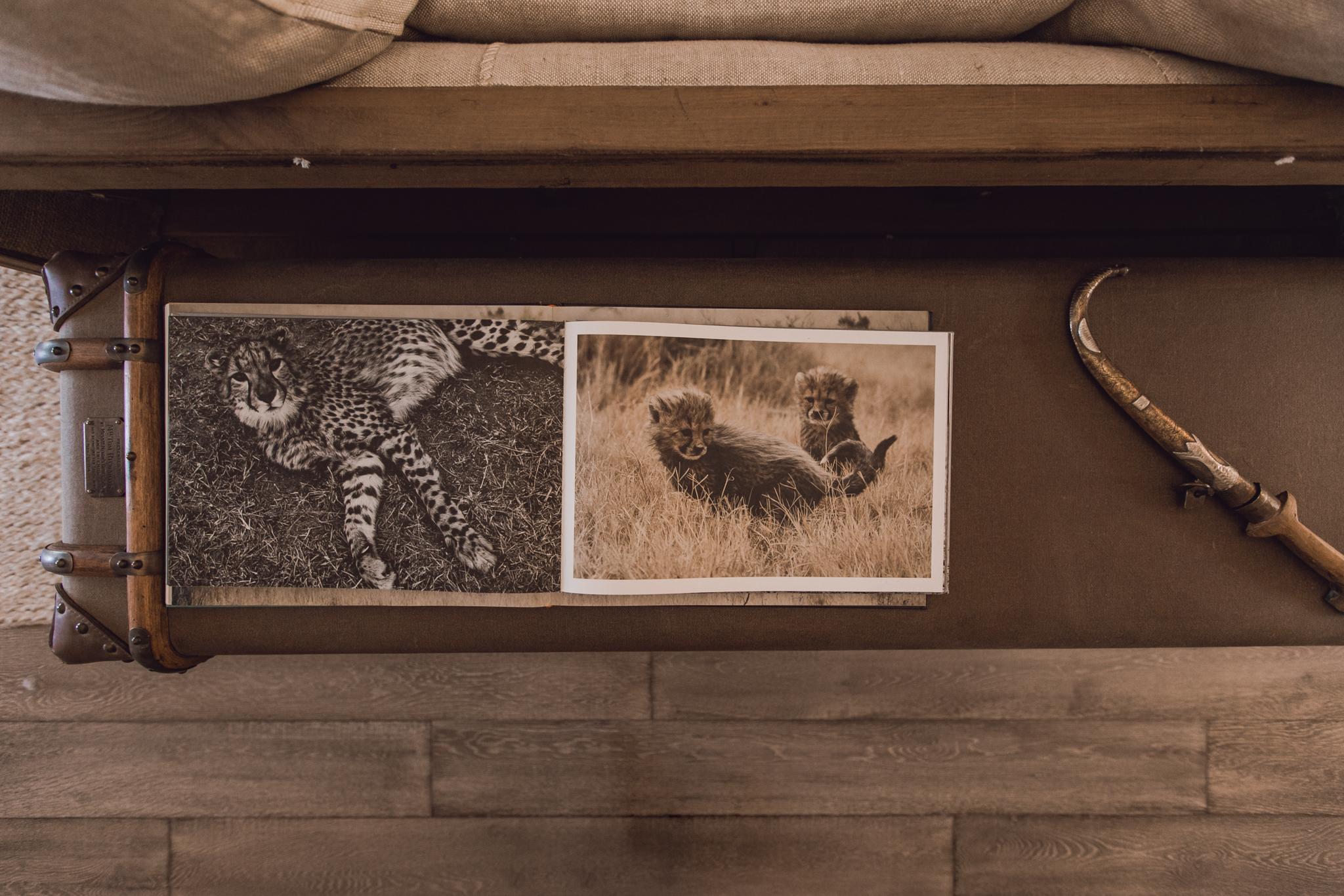 interior-decor-west-elm-tiger