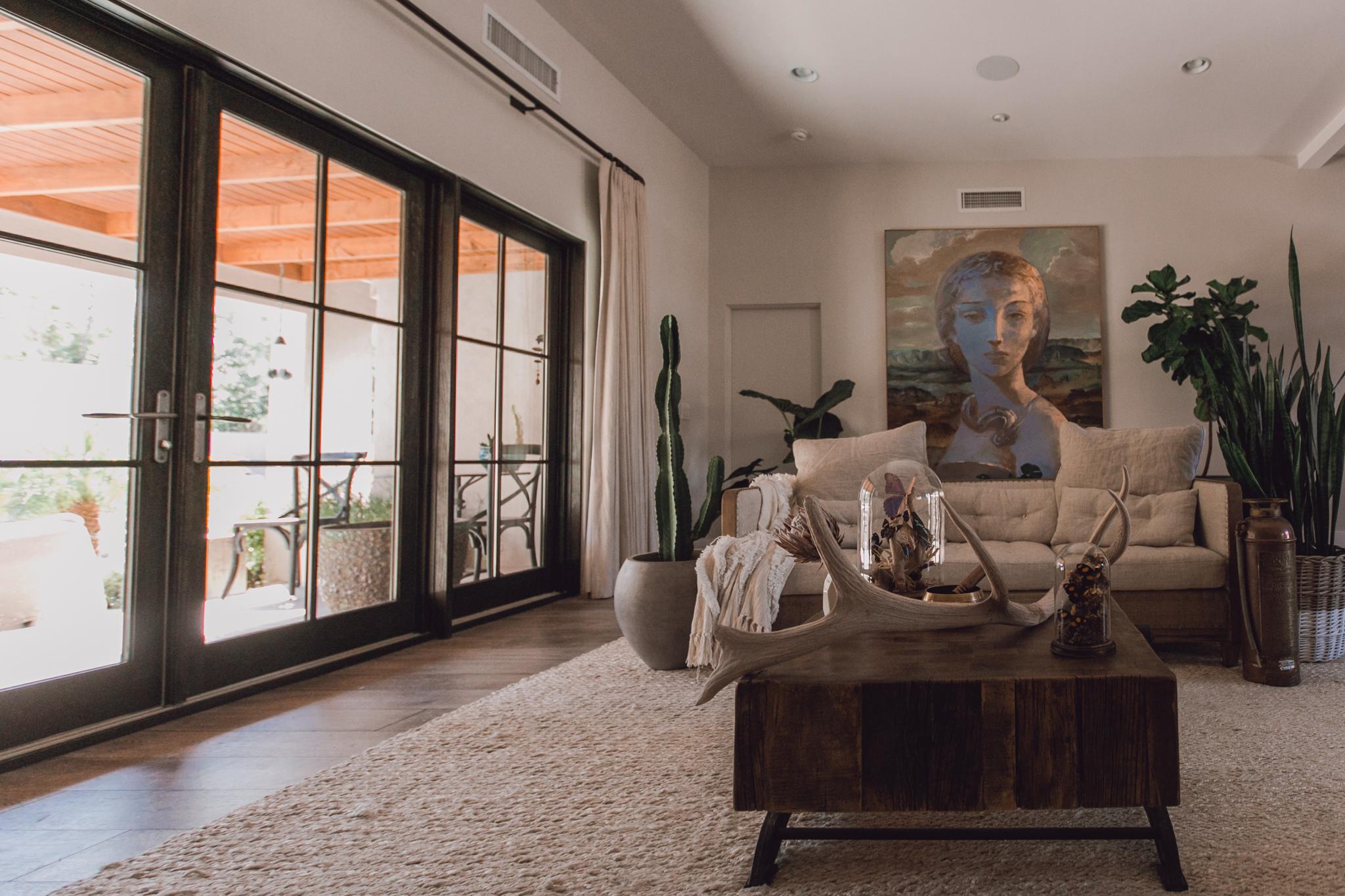 livingroom-plants-westelm