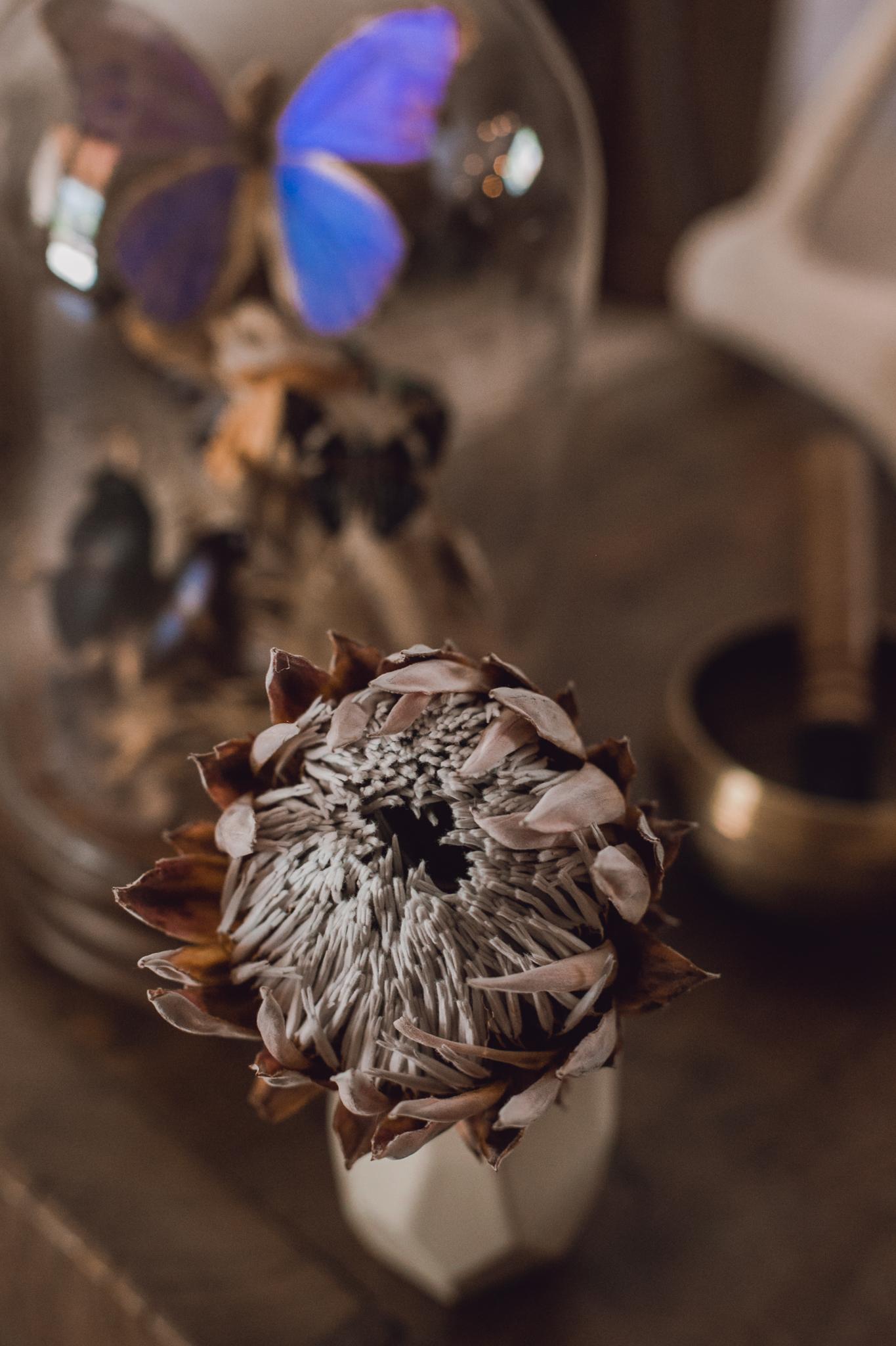 dried-florals