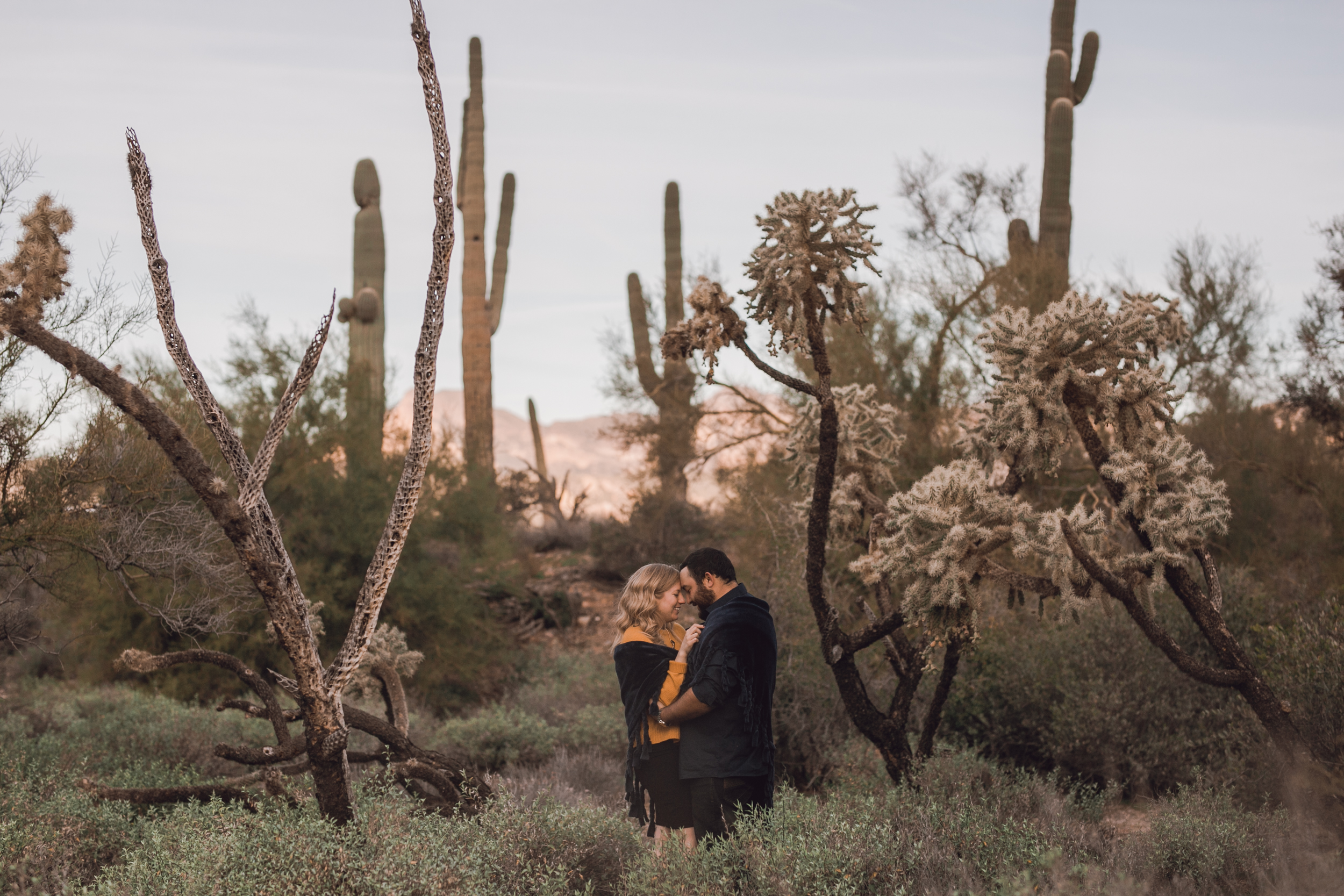 superstition mountain, superstition mountain engagement session, phoenix engagement session, arizona engagement photographer-11.jpg