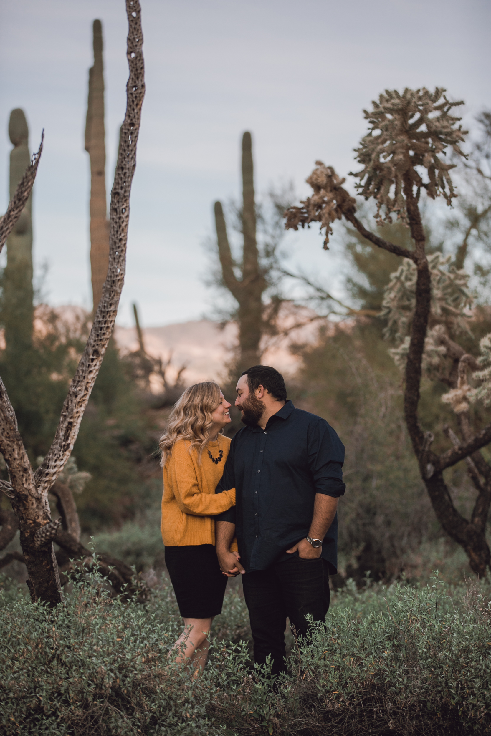 superstition mountain, superstition mountain engagement session, phoenix engagement session, arizona engagement photographer-14.jpg