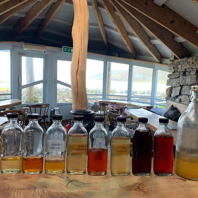 Been making and testing - this lot are delicious #drinkthewild #isleofharris #drinkingplants #lovemyjob