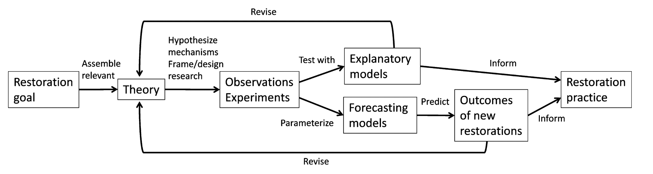 Fig. 2: A conceptual map illustrating how adaptive management can advance prediction and certainty in restoration ecology. Once restoration goals are set, theory-based observations and experiments are implemented and tested with explanatory and forecasting models. New insights from this monitoring are used to inform the current restoration practices, to predict the outcomes of new restoration projects, and to revise pre-existing theories. Adapting theory leads to new ideas for observations and experiments in an iterative process. Reproduced from Brudvig 2017.