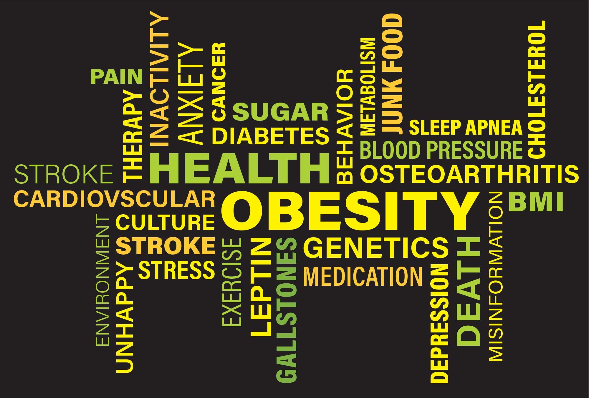 obesity-3217137.jpg