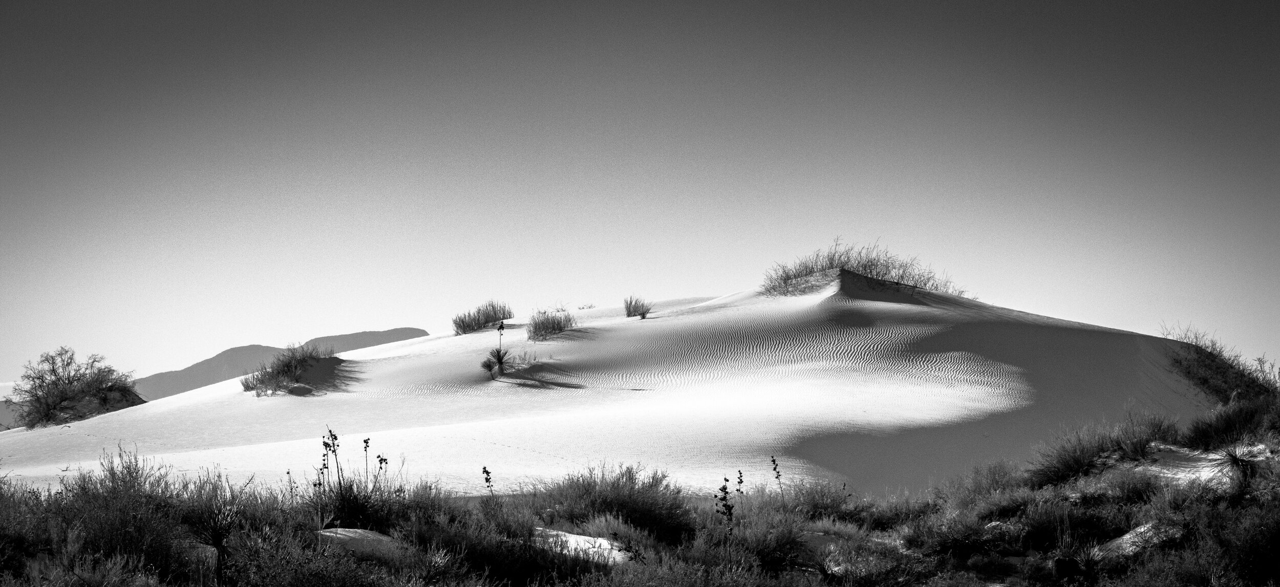 white sands migrating dune 2.JPG