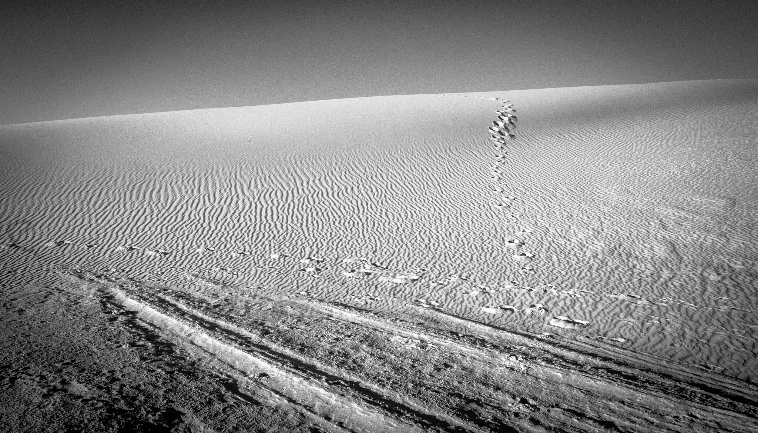 white sands the living dunes tracks.JPG