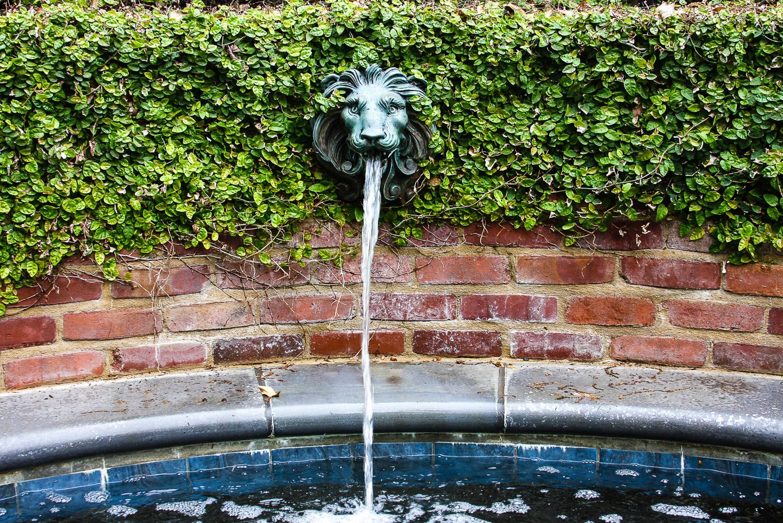 Lion's face fountain