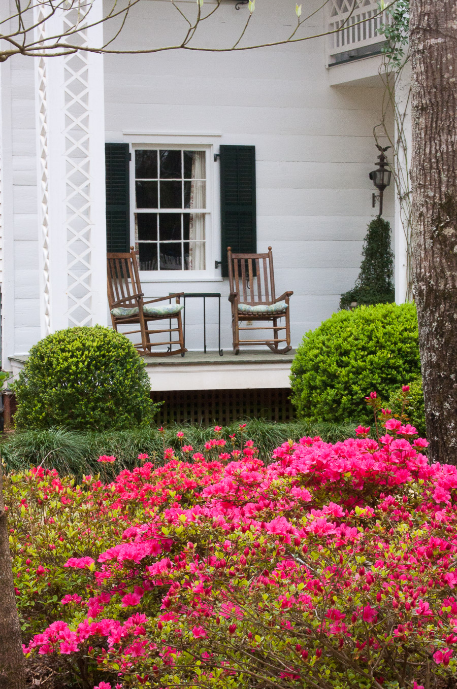 Knowleton-garden-rocking chairs on porch with azaleas (1 of 1).jpg