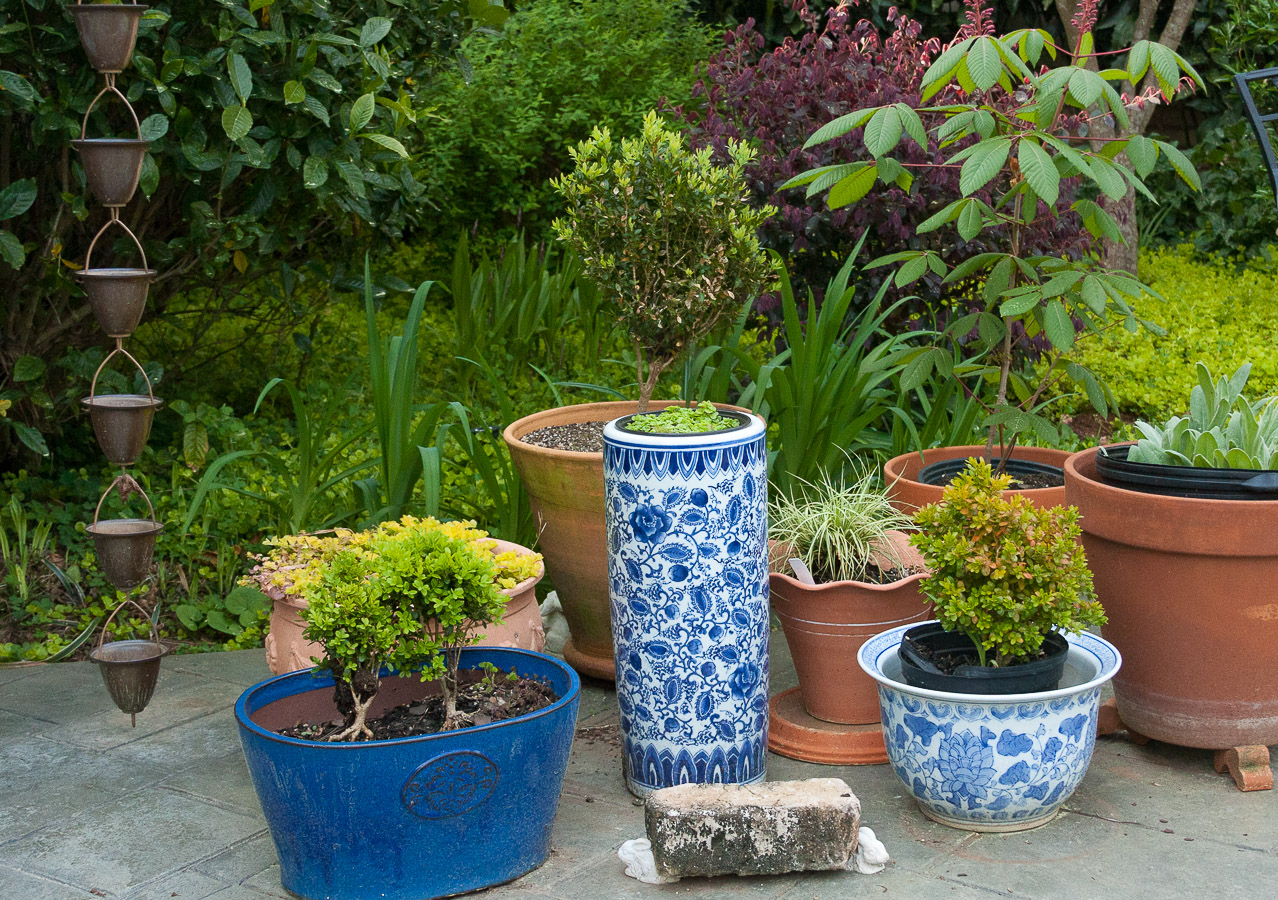 Cavan-blue garden pots (1 of 1).jpg