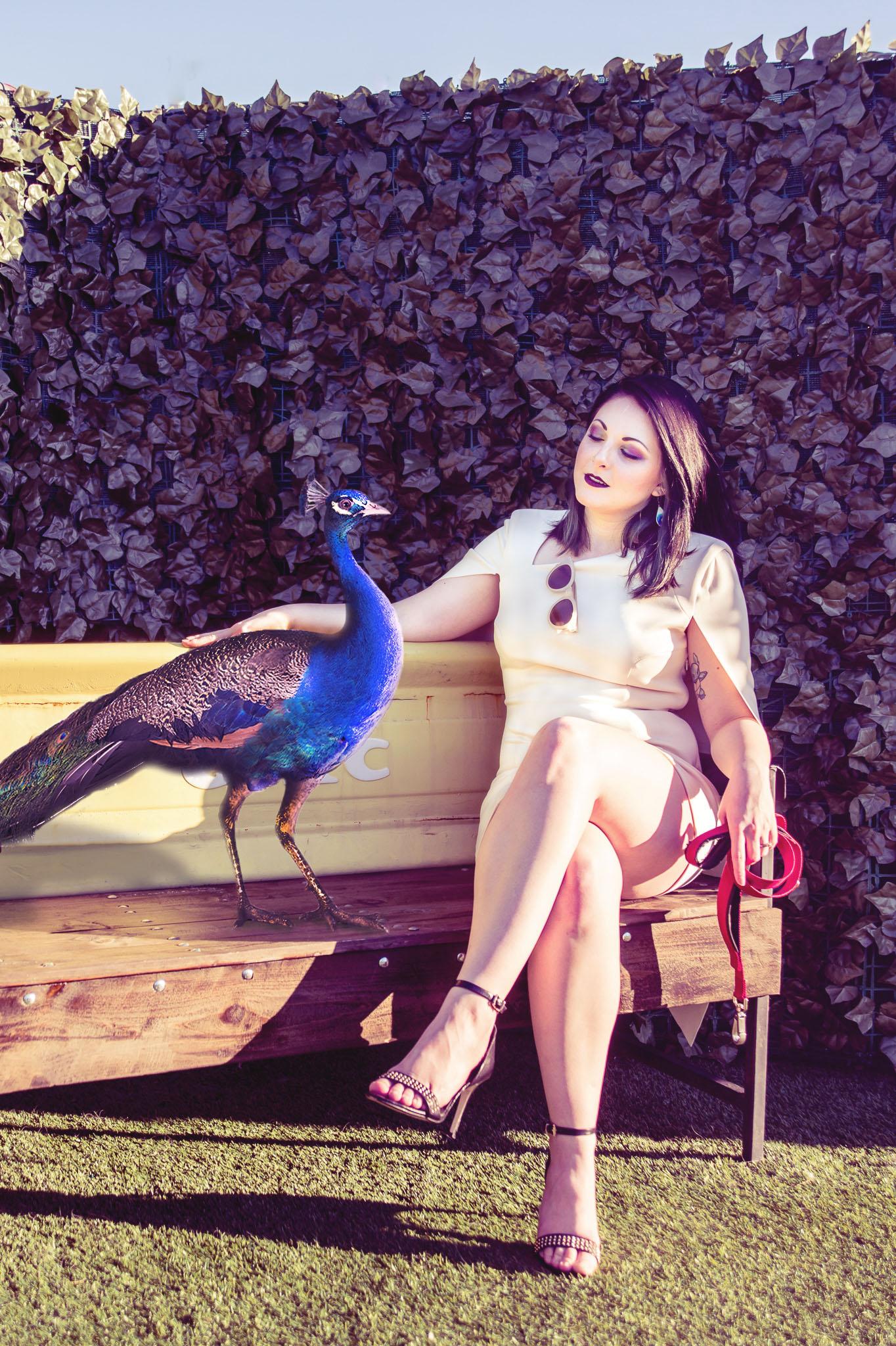 Talia Sitting w Peacock.jpg