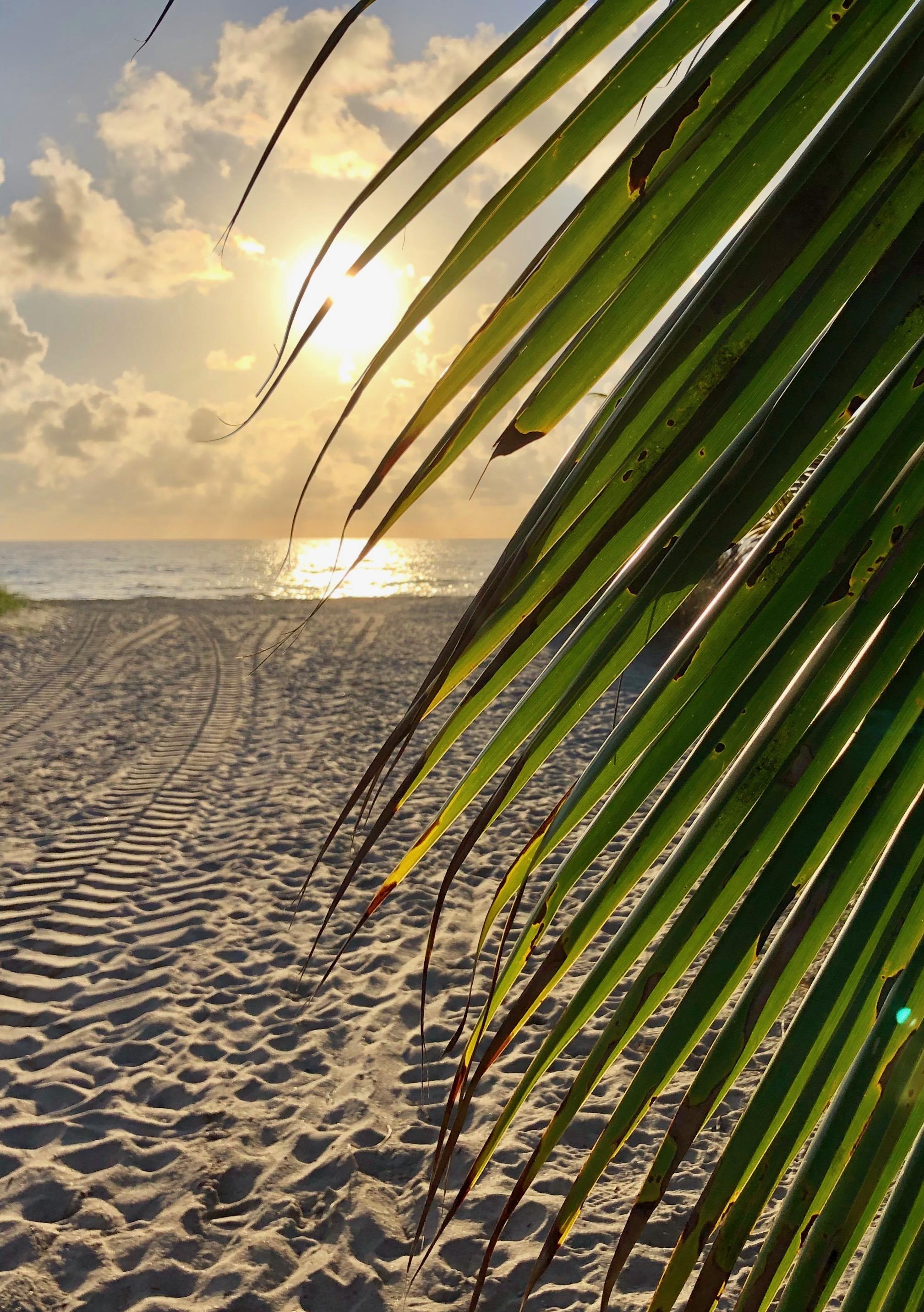 Morning sunrise over the Atlantic Ocean in Delray Beach, FL.