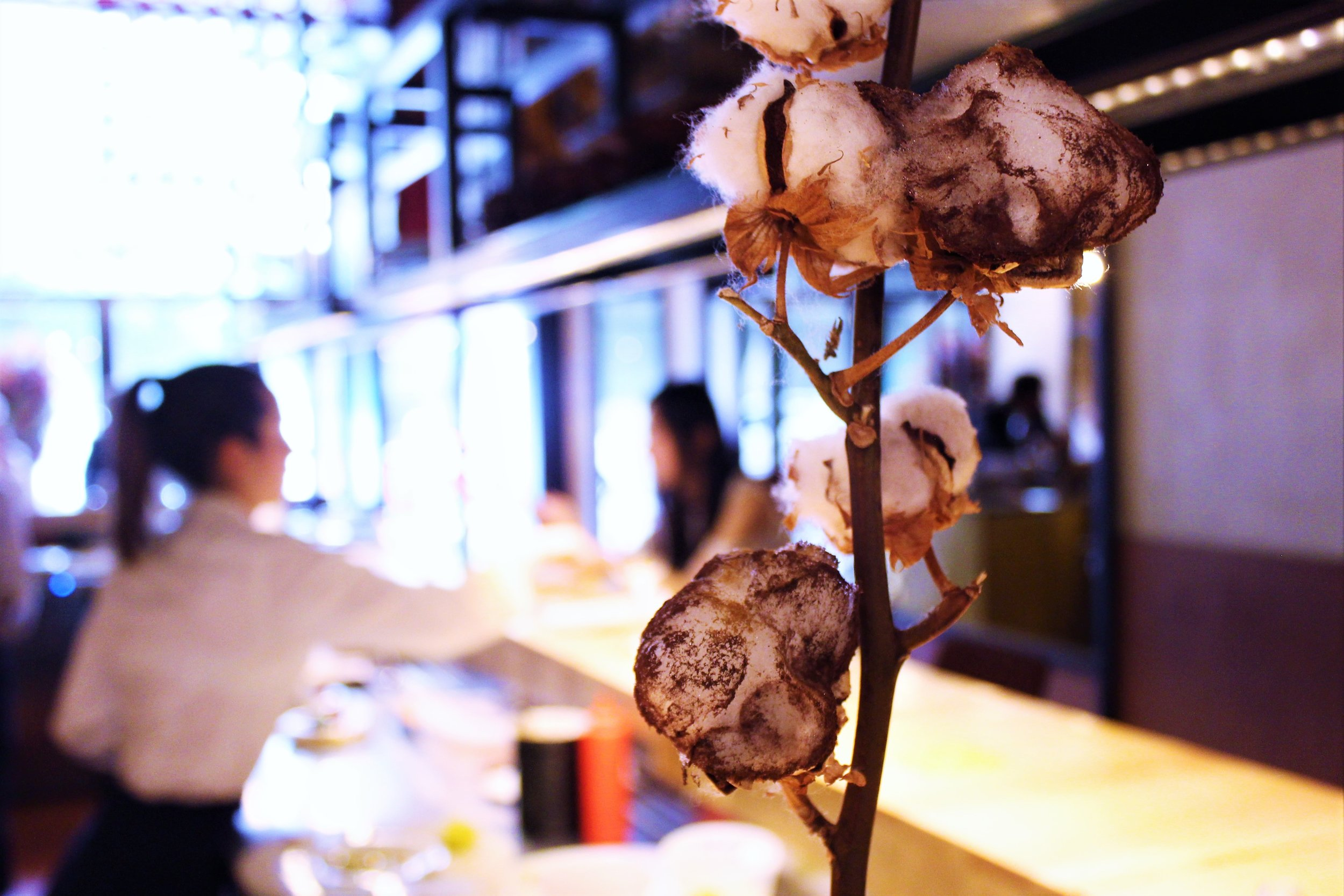 Cotton of Cocoa and Mint at Disfrutar in Barcelona