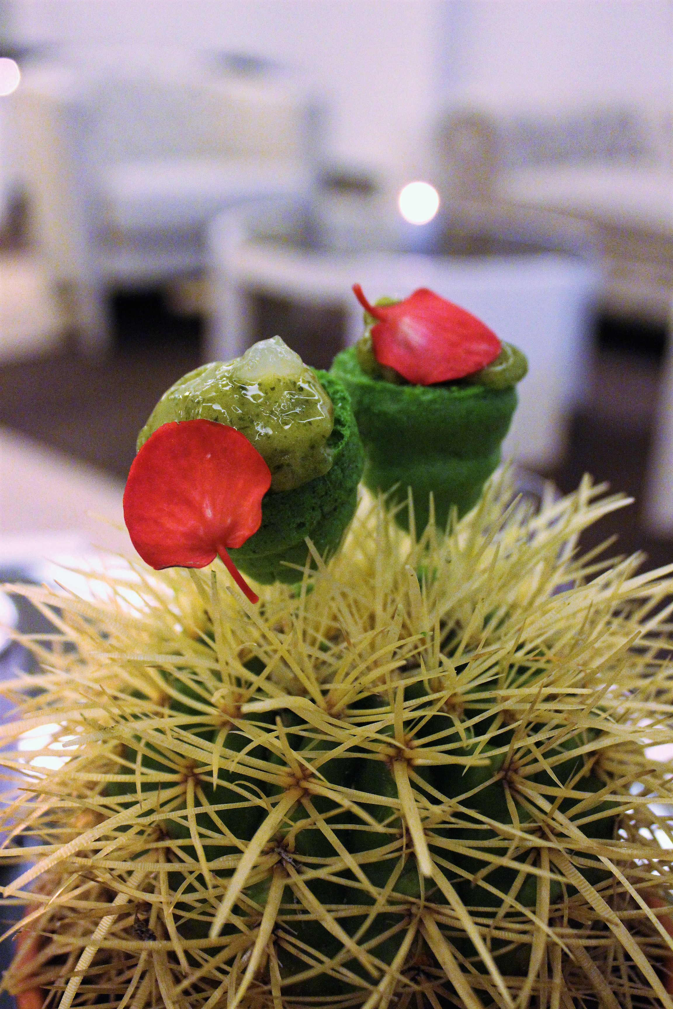 Lime Cactus, Tequila, and Green Leaves at ABaC Restaurante in Barcelona