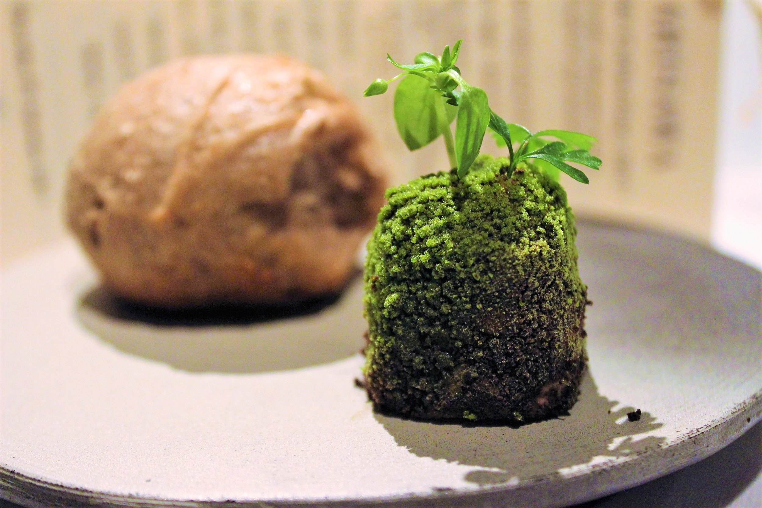 Moss Butter and Bread of the Forest 2010 (2).jpg