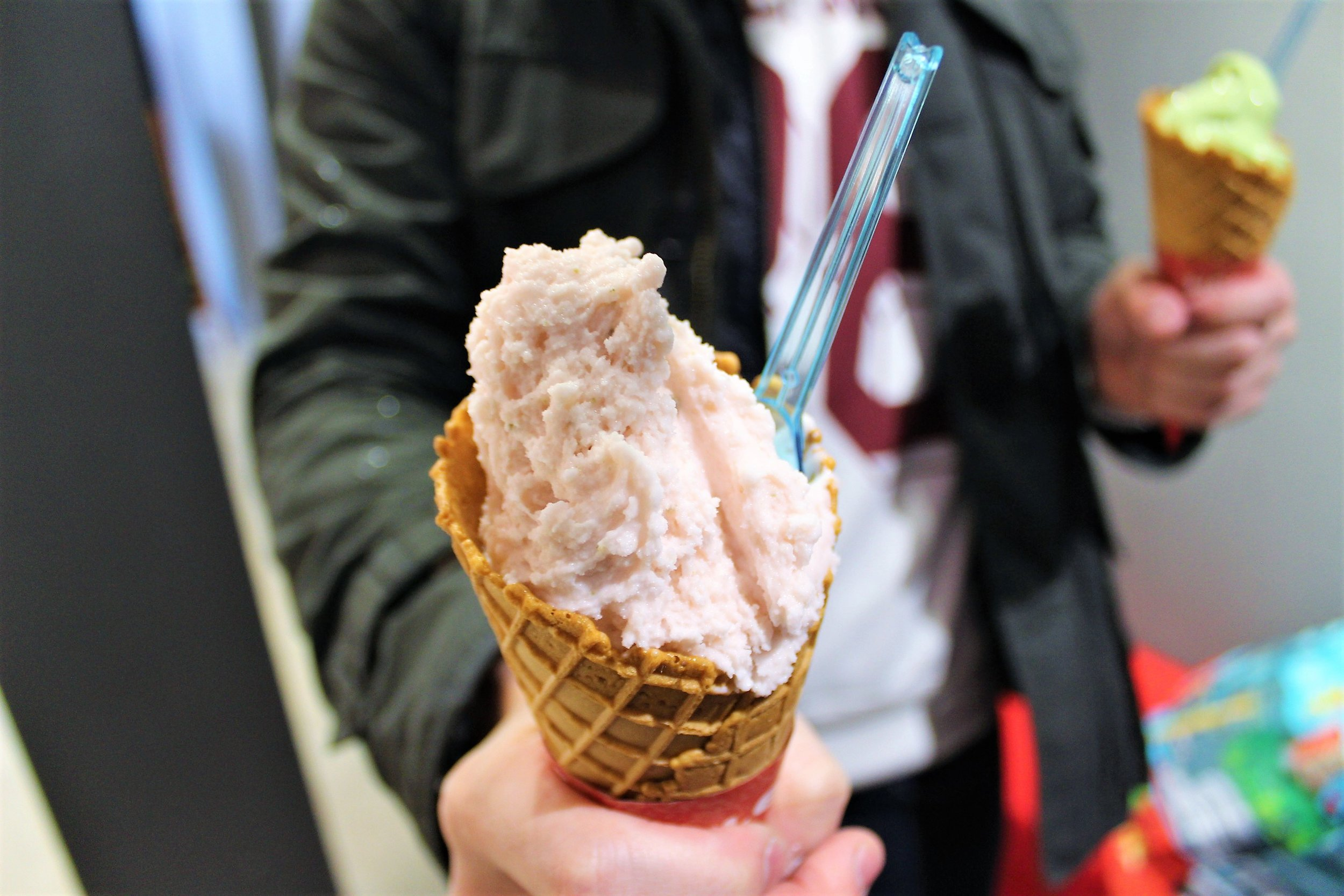 Cherry Blossom Ice Cream at Shinpachi Chaya in Kyoto, Japan