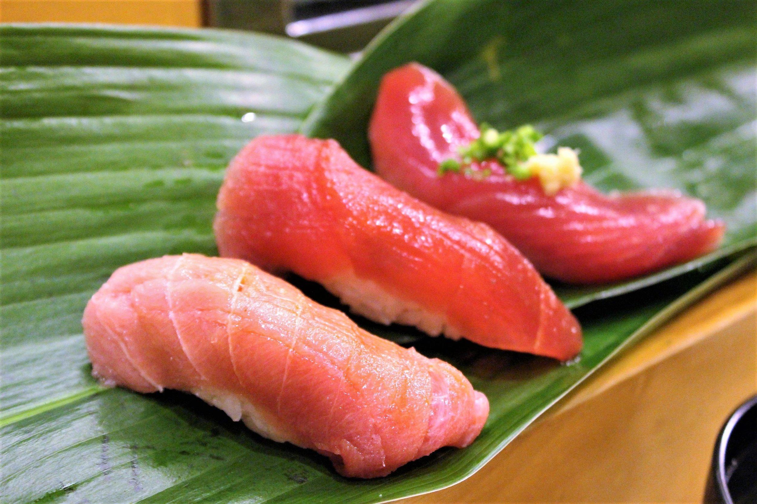 Chutoro, Maguro, Bonito Fish at Yamazaki in Tokyo, Japan