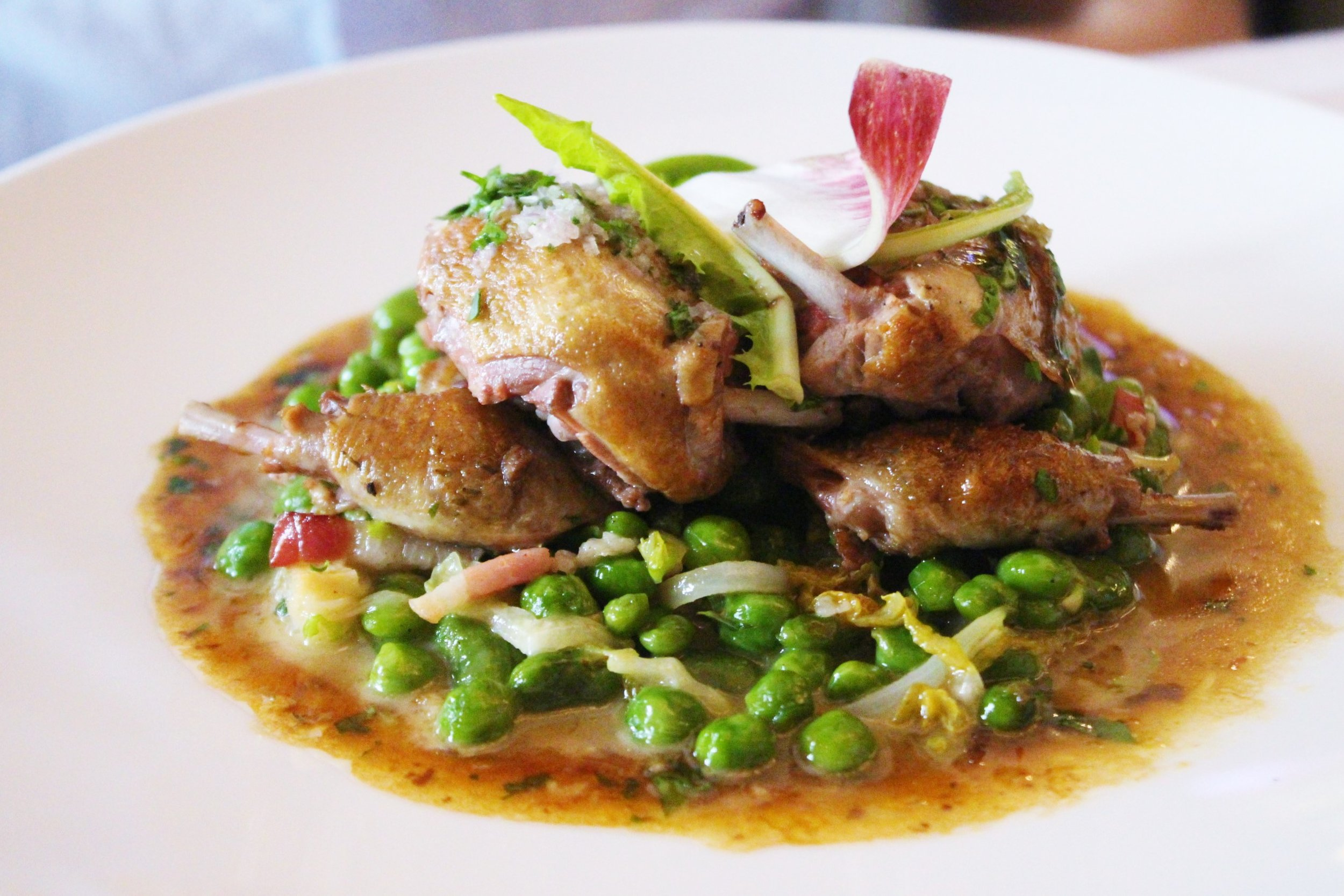 Pigeon Roasted with Grey Shallots, Petits Pois, and Broad Beans a la Francaise