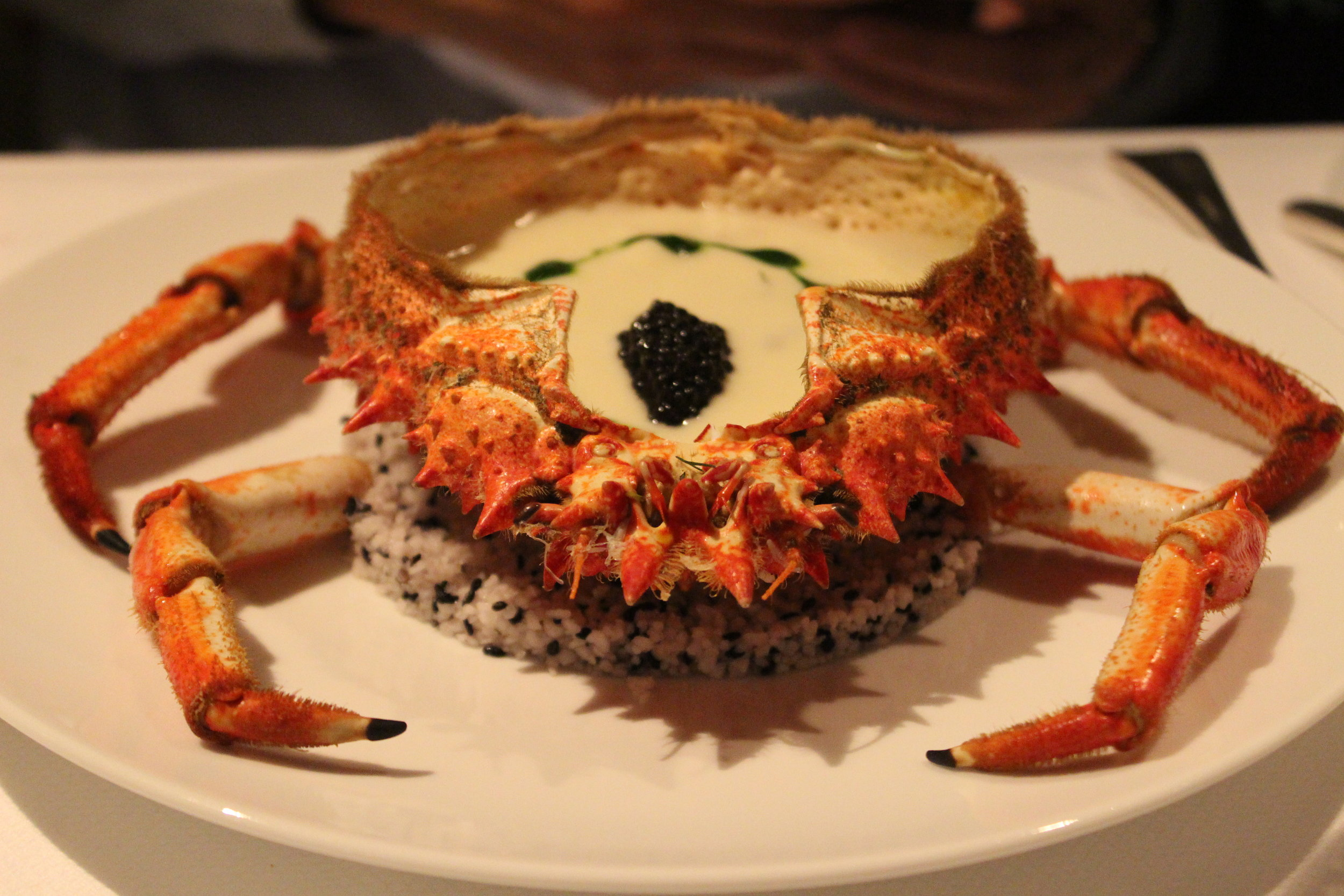 Spider Crab Jelly with Creamy Rock Crab and Herb Fusion