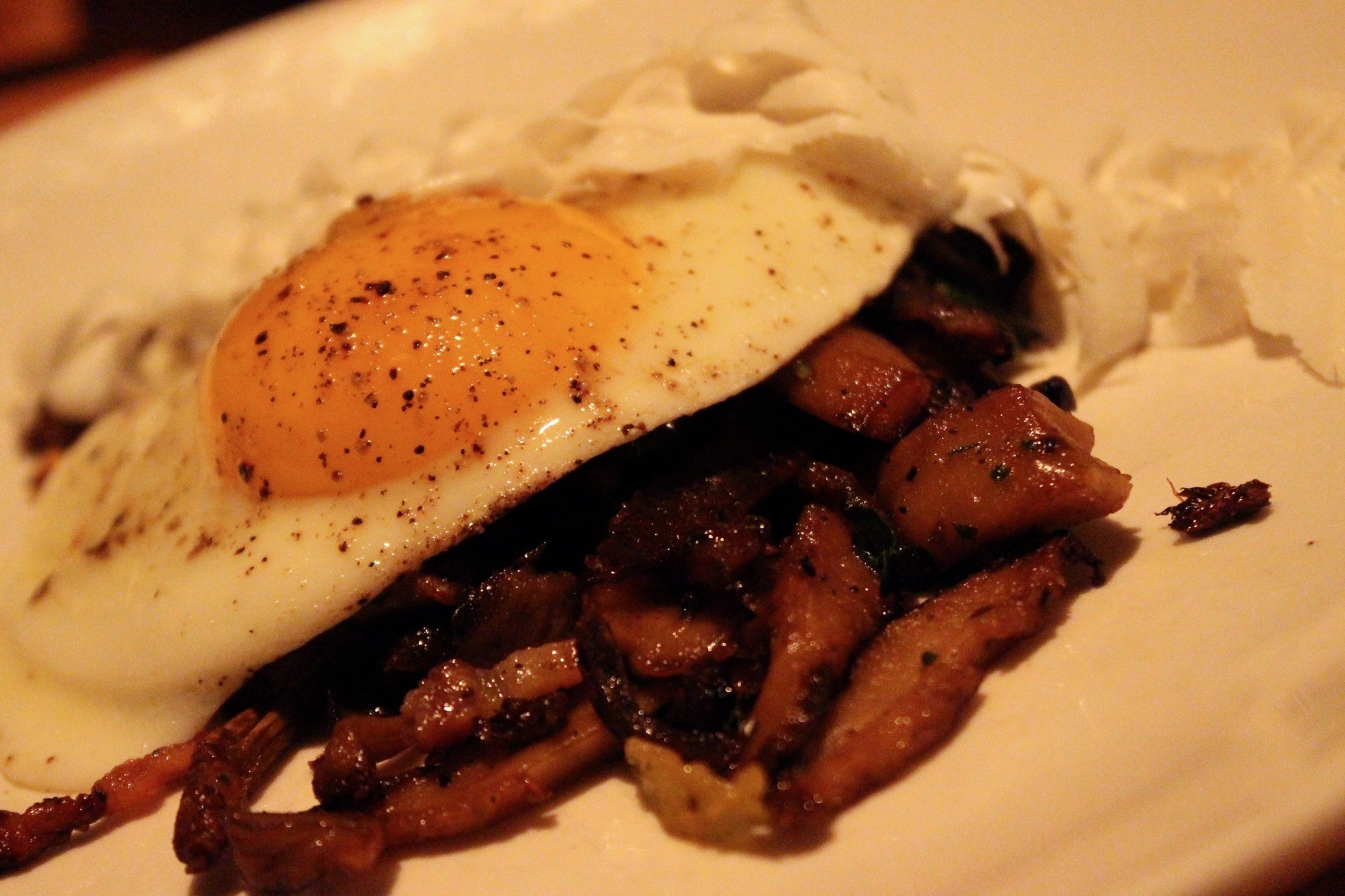 Roasted mushrooms, pancetta, fried egg, ricotta salata at L'Artusi