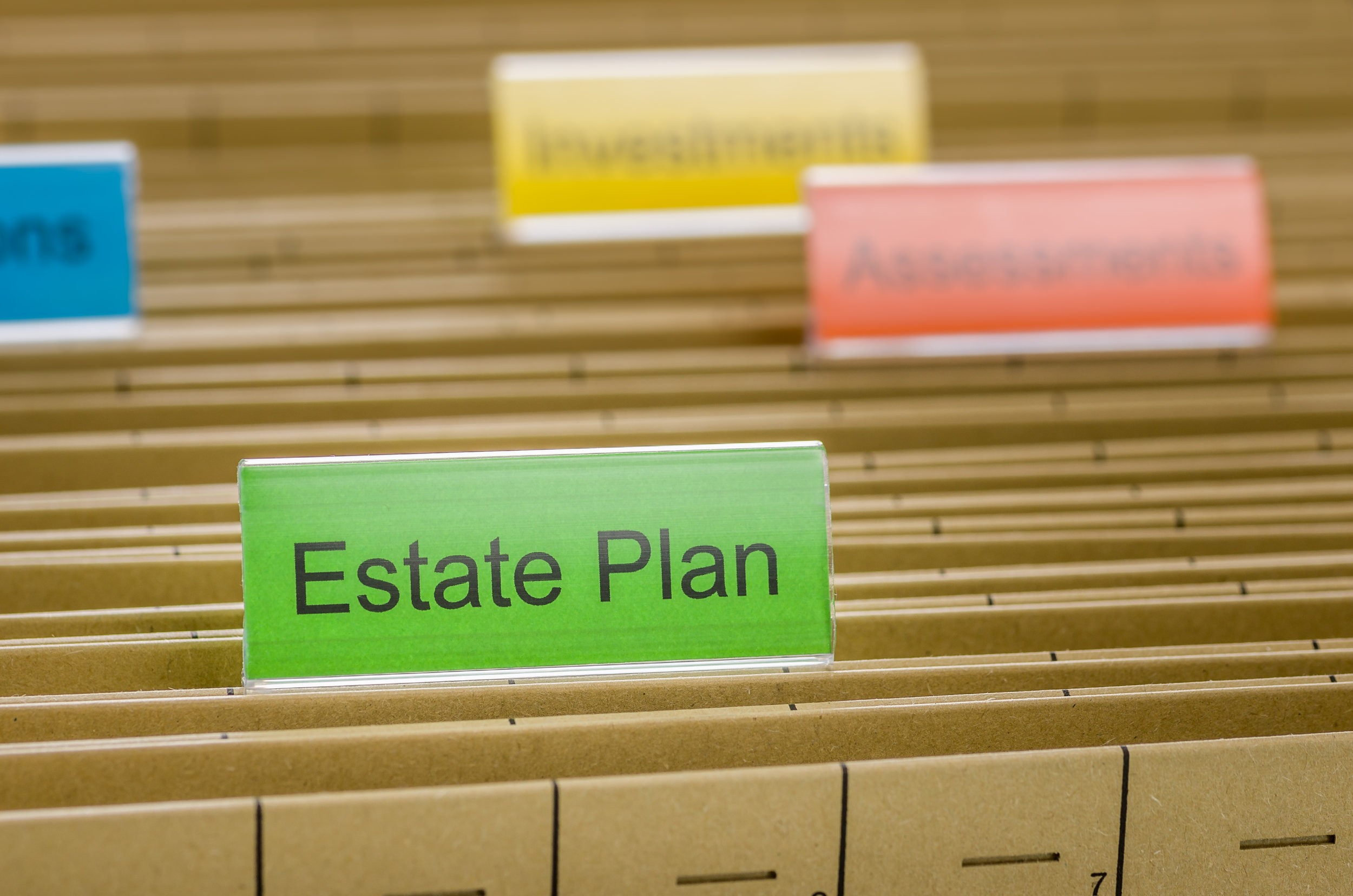 Estate Planning   It is important to avoid the probate process by placing your assets in a revocable living trust. We can also nominate a guardian to care for your minor children in case something happens to you. We make the process simple and affordable.