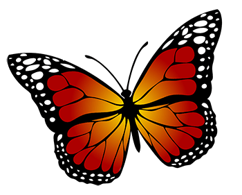 monarch_butterfly_chaos_theory.png