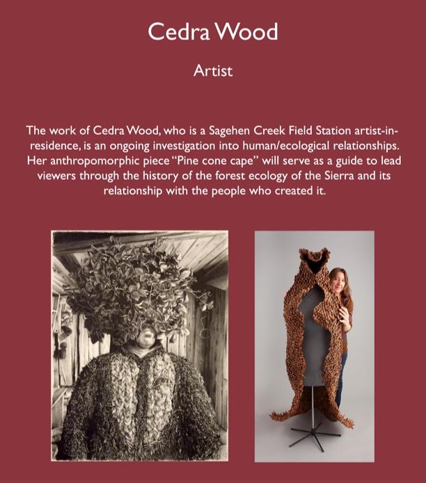 Cedra_Wood_dscrptn_V2.jpg