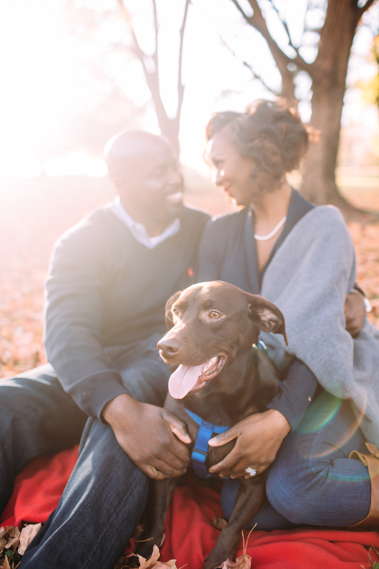 St Louis Fall Engagement session with dog