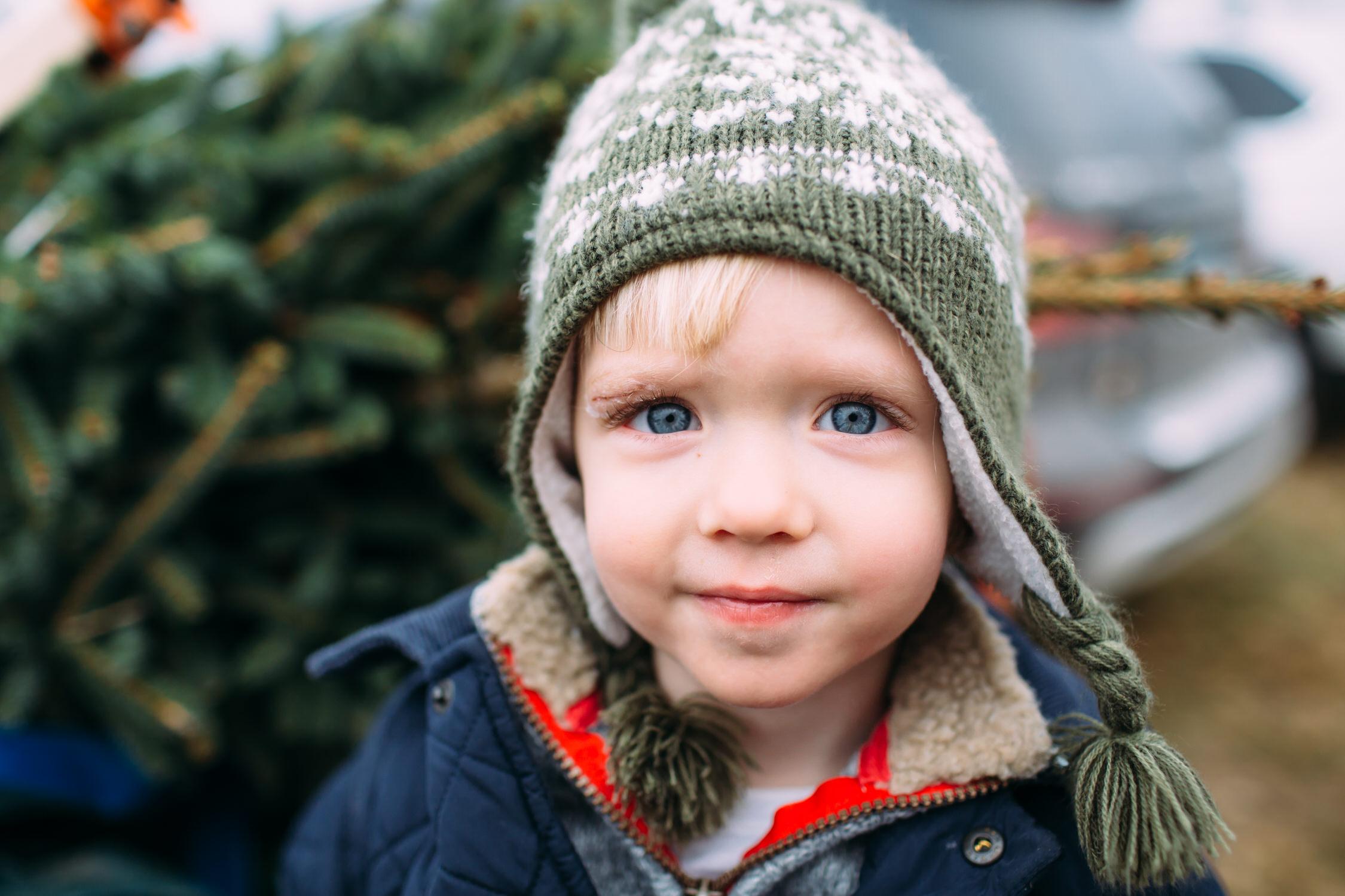Christmas tree farm photos, Connecticut Family photographer