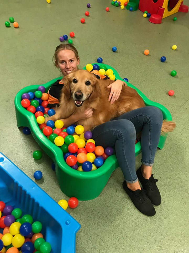 STEPH: CEO (EAST)  This girl knows how to work with dogs - you should see her! With more doggy skills than most people could even dream of, Steph is a doggy BFF to all. Big dogs, small dogs, working breeds or scent hounds, Steph has something to tickle all of their furry senses.