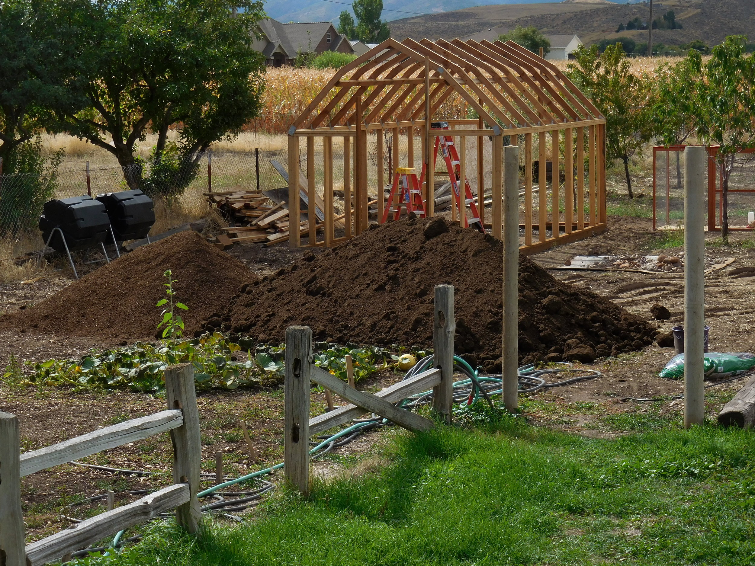 "That's a whole lotta ""aged steer manure"" for the garden, plus compost. This was from fall, 2 years ago. Lovely, lovely dirt! Also, our greenhouse was still under construction, as you can see!"