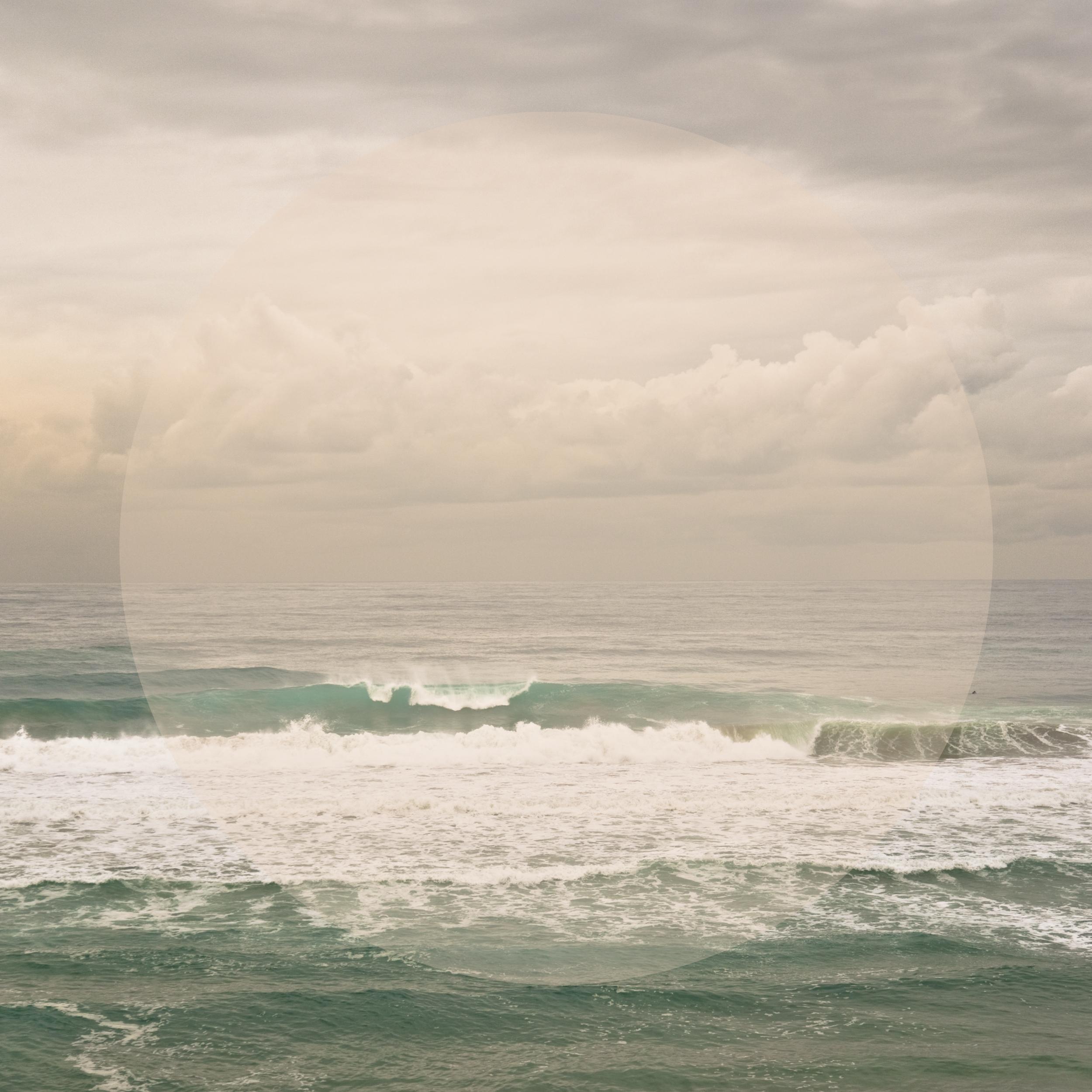 Lone SURFER Almond, 2013