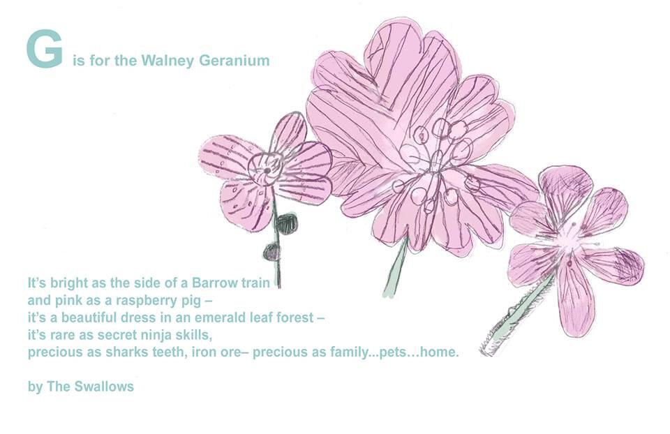 g-is-for-geranium.jpg