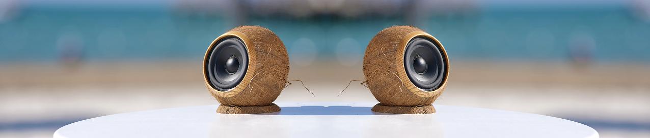 Cocobo coconuts speakers