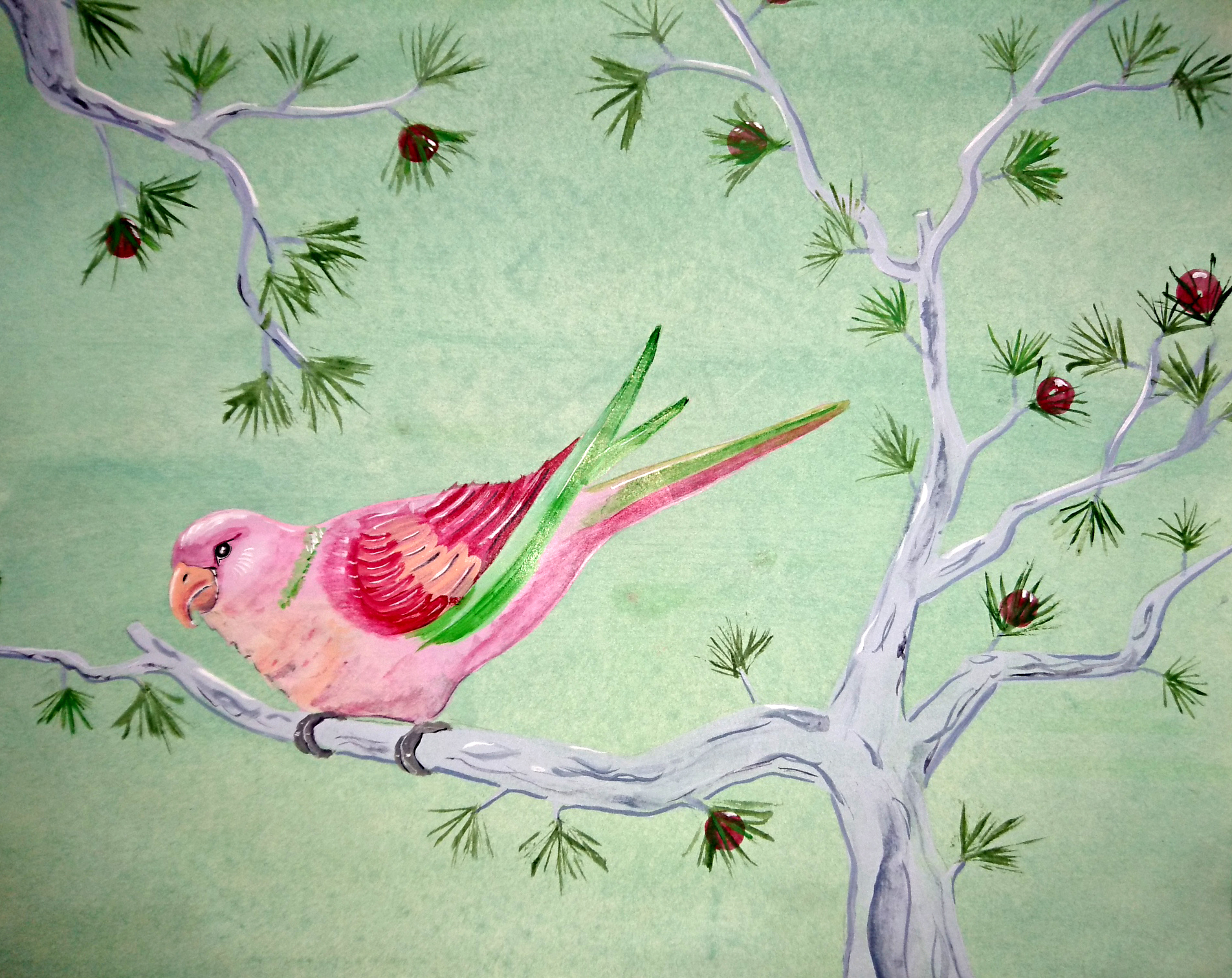 pink and green parrot on green.jpg