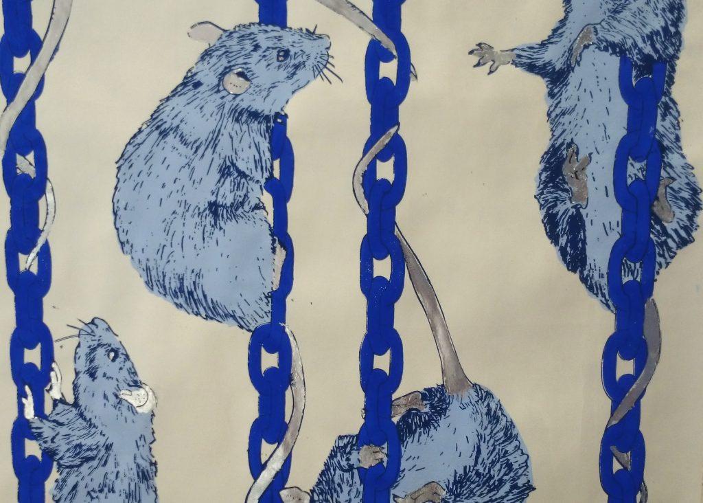 rats_blue_paper.jpg