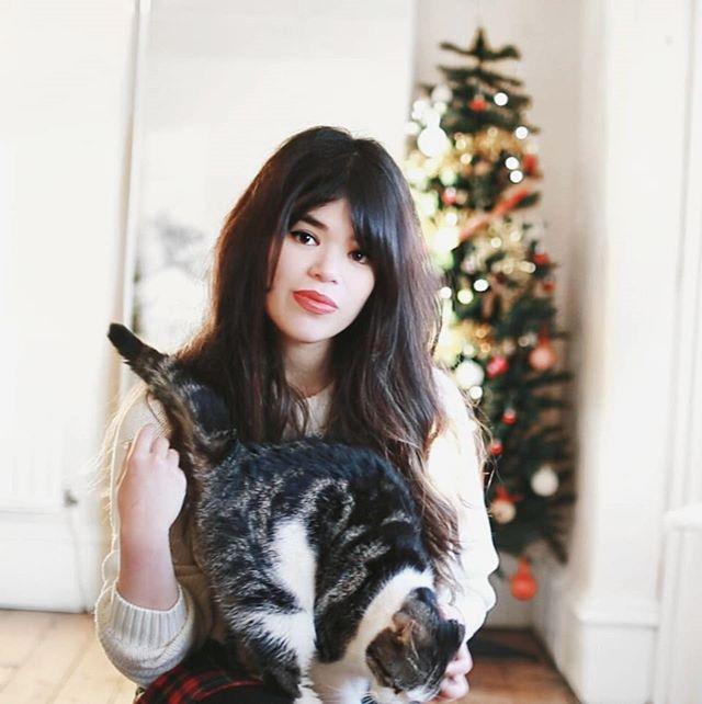 Merry Christmas Eve, folks! ❄️ . . . . #cat #catsofinstagram #christmas #christmascat