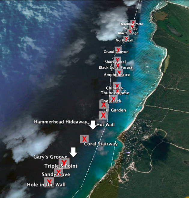 Turks and Caicos Reef Fund - Turks and Caicos Dive Sites