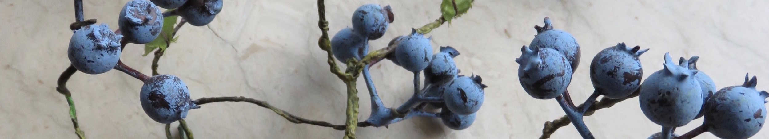 An Artistic Image Of Blueberries For  Emotional Wave Therapy